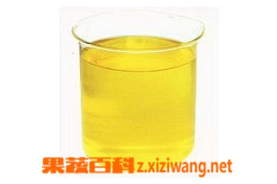 果蔬百科玉米胚芽油